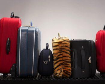 Prévoir les bons bagages