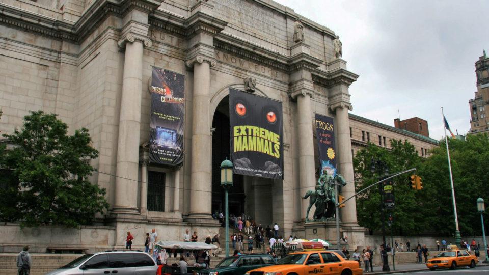 Museum Americain d'Histoire Naturelle-01